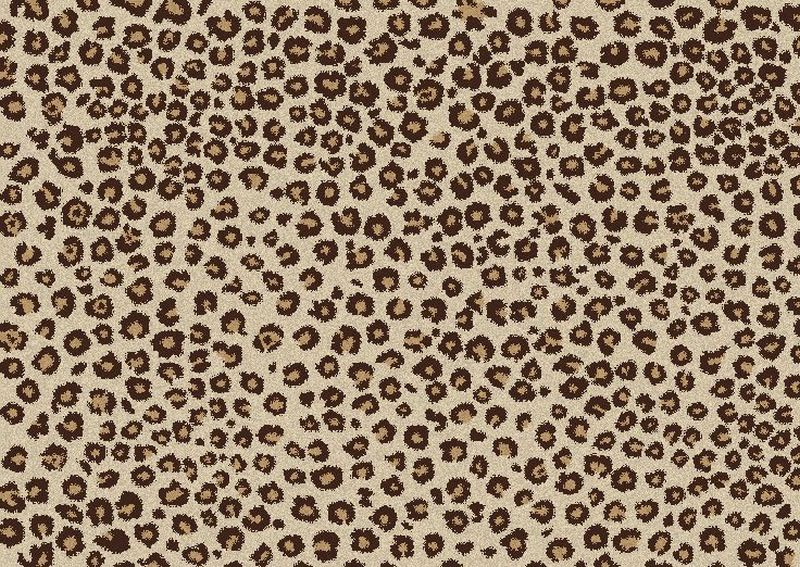 The Difference Between Leopard and Cheetah Print | Leslie Quander